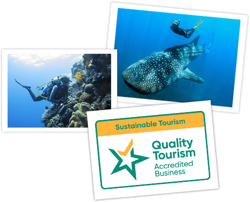 Dive Ningaloo - Tripadvisor Certificate of Excellence