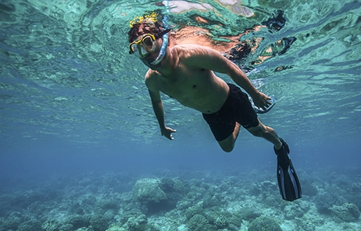 Dive Ningaloo - Snorkel Ningaloo