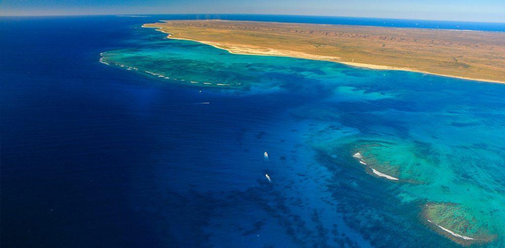 The ningaloo reef dive ningaloo - Ningaloo reef dive ...