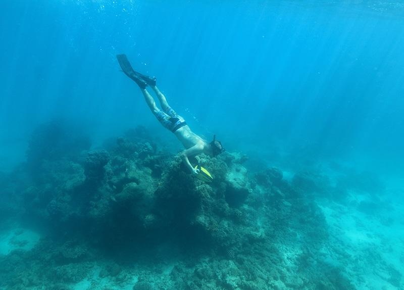 Dive Ningaloo - Half day snorkel