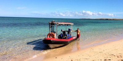 Dive Ningaloo - Sacred Spirit Rib - Muiron Islands