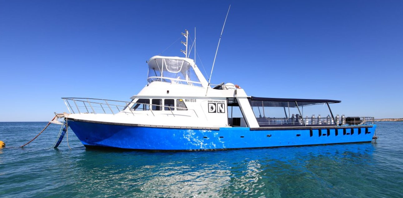 Dive Ningaloo - Ceto Dive Boat