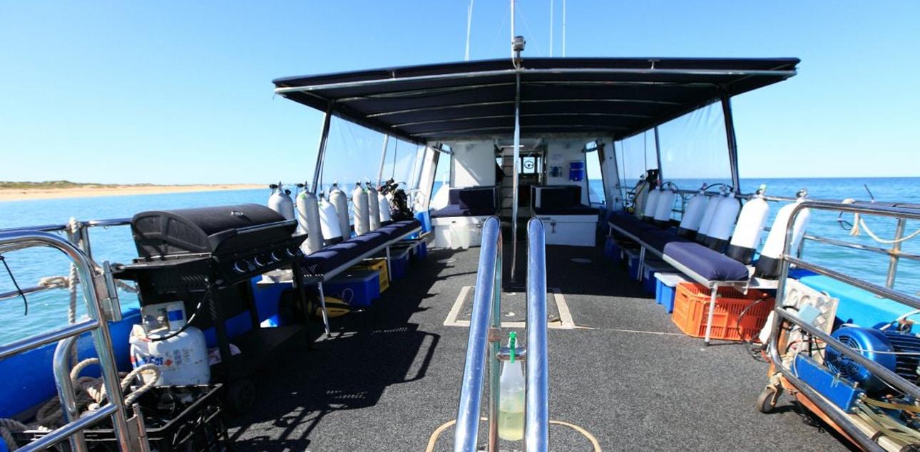 Dive Ningaloo - Back Deck - Ceto Dive Boat