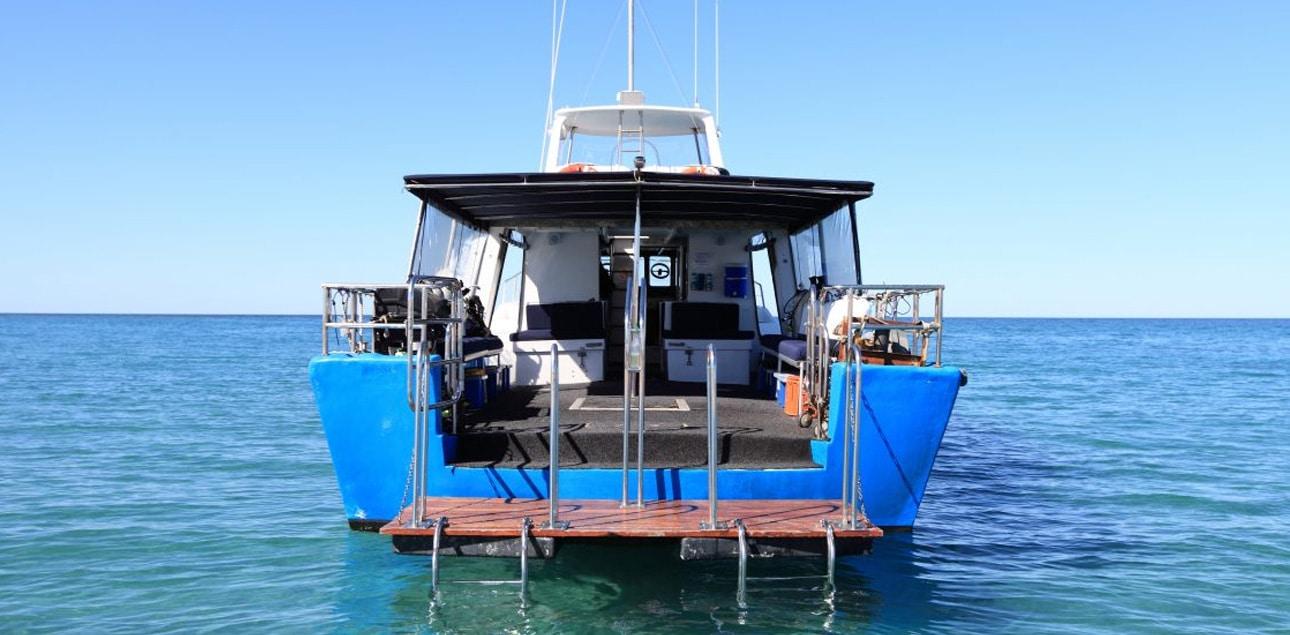 Dive Ningaloo - Ceto Dive Platform