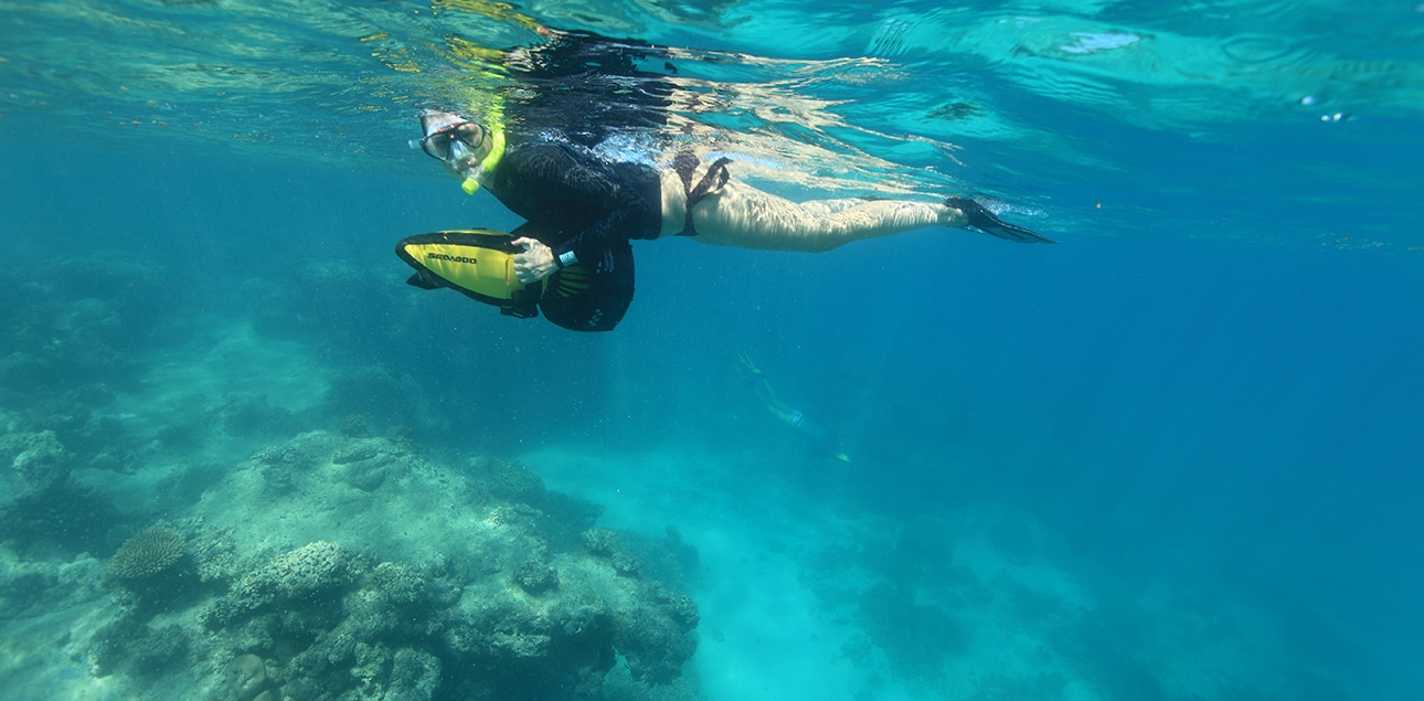Dive Ningaloo - Half face snorkel tours